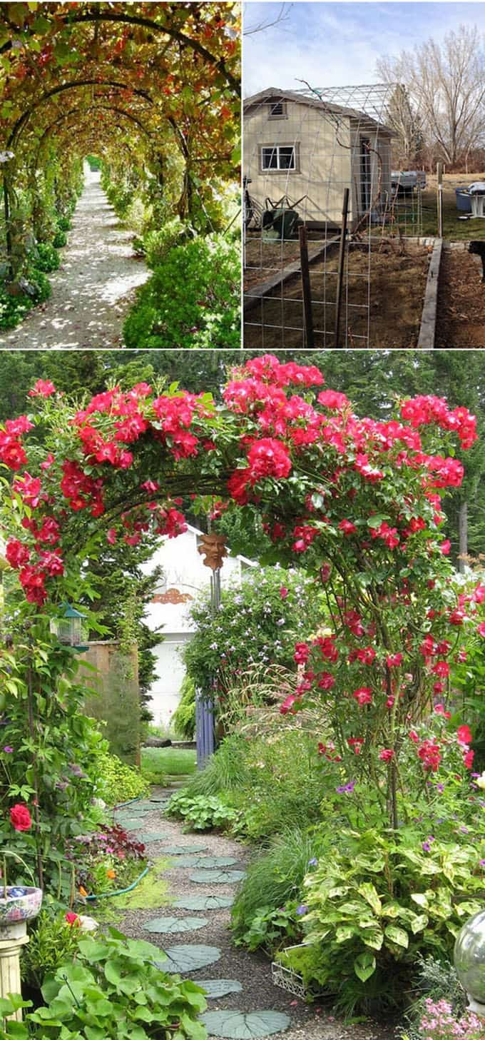 A Tunnel Of Living Vines Such As Grapes And Roses Can Be Created Easily  With Hardware Fencing Panels. ( Source: 8   9   10)