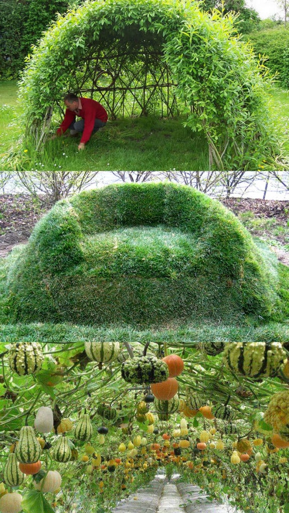 DIY living functional garden decorations & low cost outdoor structures: magical grass sofa, fun bean teepee, beautiful grape & rose arches, willow dome & fence, etc!