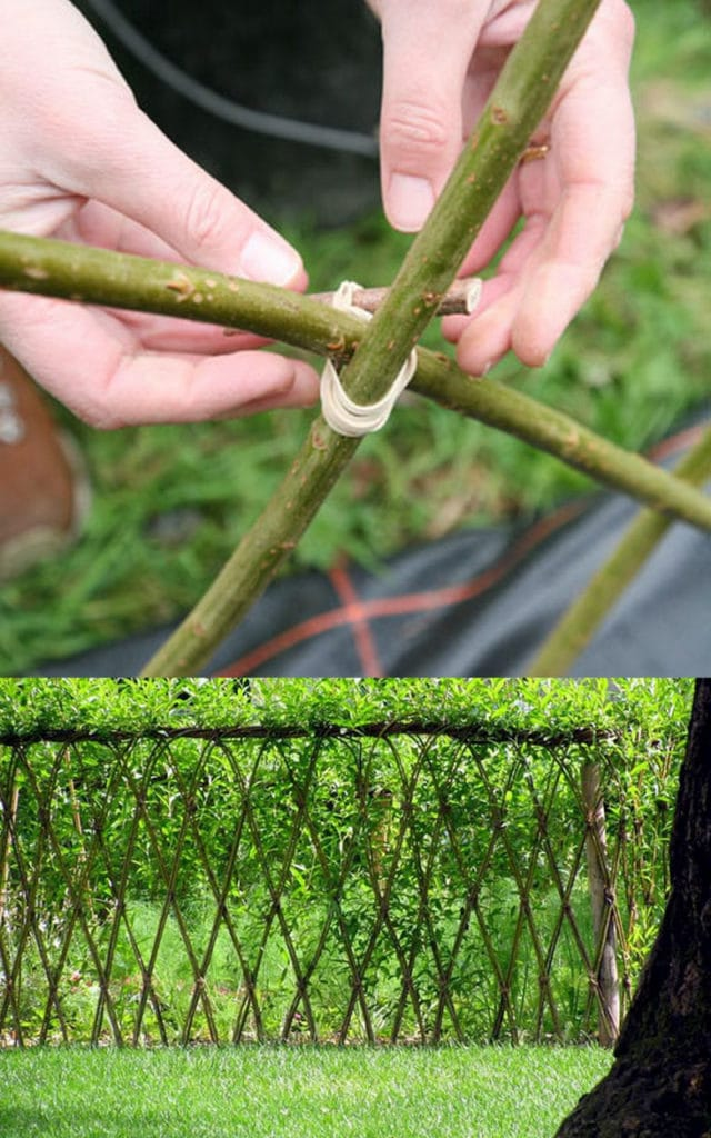 how to create Living Willow Fence & Garden Structures