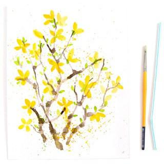 Paint Watercolor Flowers – Forsythias!