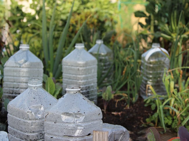 bottle-greenhouse-apieceofrainbowblog-11