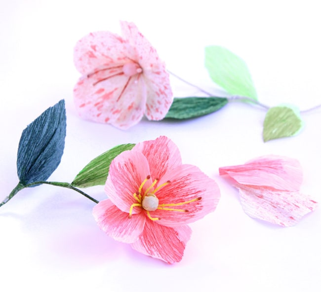 Diy paper cherry blossom branches a piece of rainbow make paper flower poppies and stamens a piece of rainbow blog mightylinksfo