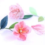 Make Paper Flower Poppies and Stamens | A Piece Of Rainbow Blog