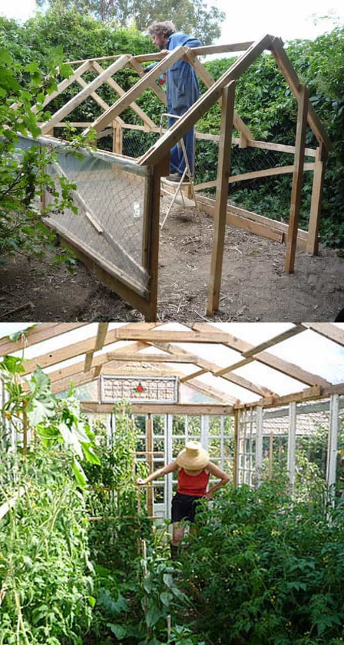 DIY Greenhouses Apieceofrainbow (2)