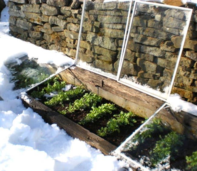 DIY-Greenhouses-apieceofrainbowblog (10)