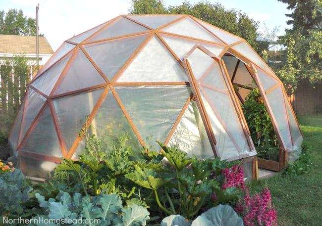 DIY-Greenhouses-apieceofrainbowblog (16)