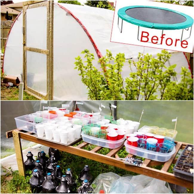 DIY-Greenhouses-apieceofrainbowblog (18)