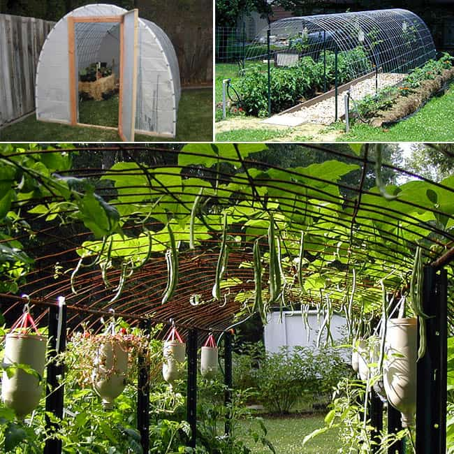 21 DIY Greenhouses With Great Tutorials A Piece Of Rainbow