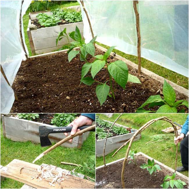 DIY-Greenhouses-apieceofrainbowblog (21)