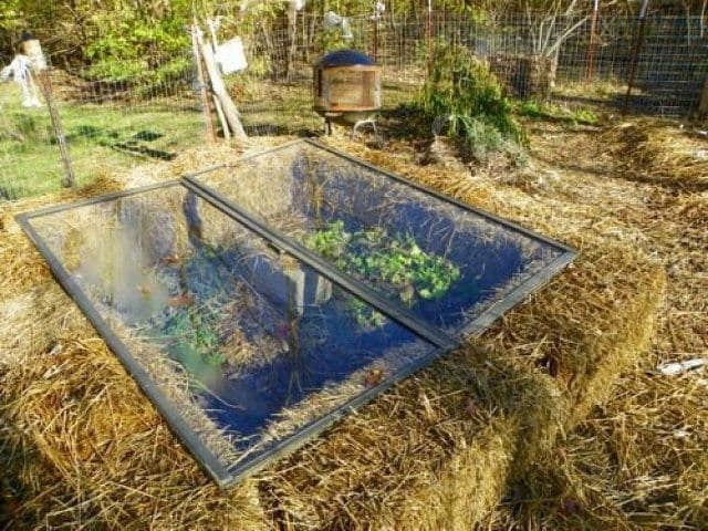 DIY-Greenhouses-apieceofrainbowblog (30)