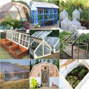 Ultimate collection of THE BEST tutorials on how to build amazing DIY greenhouses, hoop tunnels and cold frames! Lots of inspirations to get you started! - A Piece of Rainbow