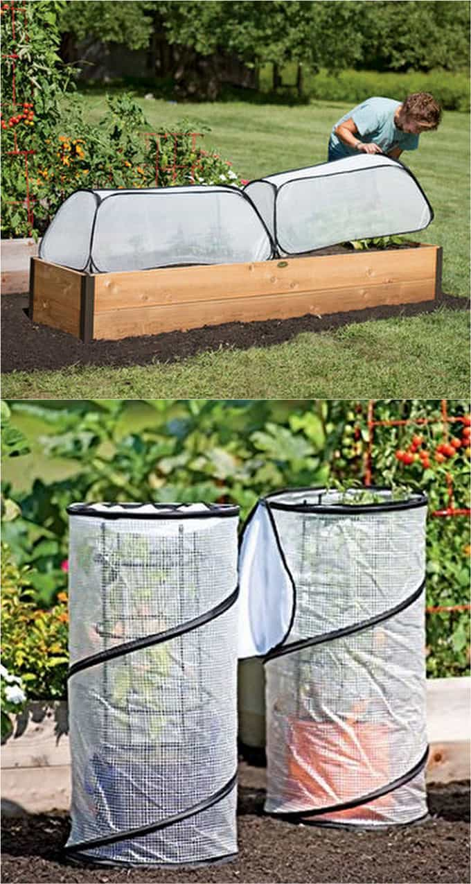 21 diy greenhouses with great tutorials a piece of rainbow version of greenhouses these collapsible covers are made of polyethylene greenhouse fabric they are inexpensive and easy to store when not in use solutioingenieria Images