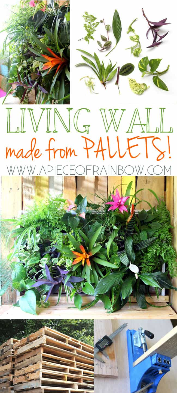 Pallet Living Wall Apieceofrainbowblog