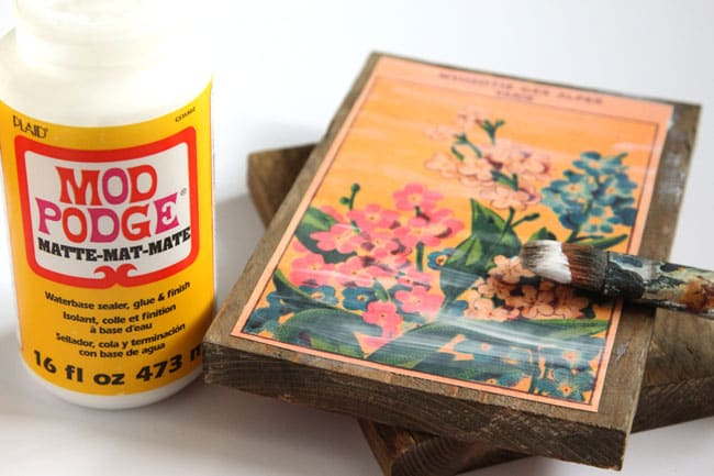 vintage-seed-packet-wall-art-apieceofrainbow (10)
