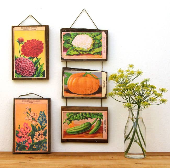 vintage-seed-packet-wall-art-apieceofrainbow (11)