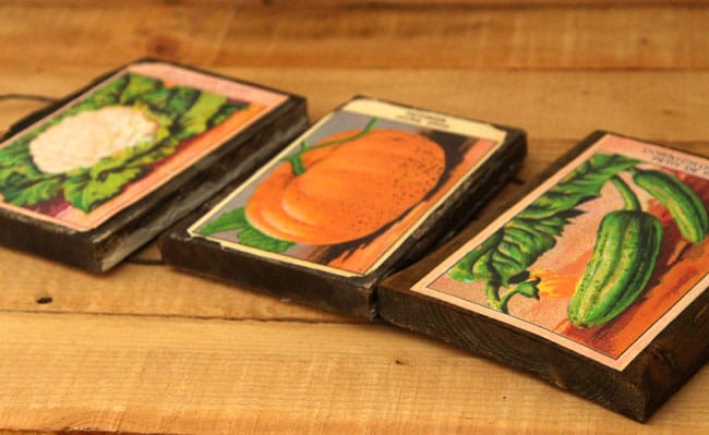 vintage-seed-packet-wall-art-apieceofrainbow (13)