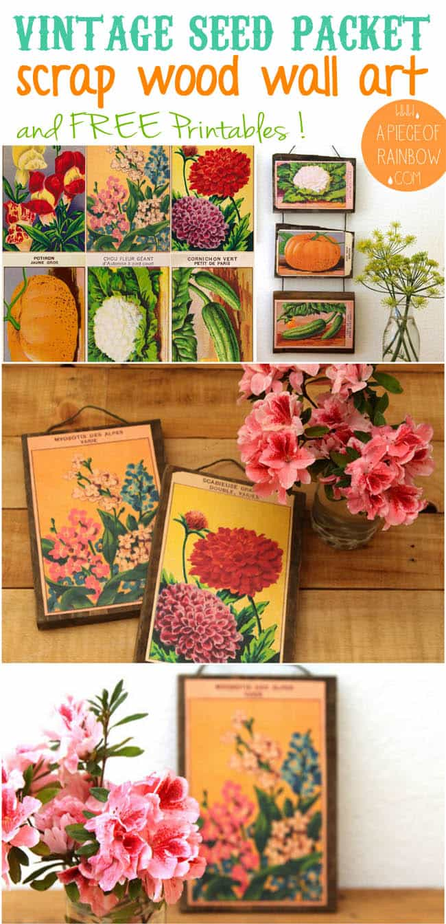 vintage-seed-packet-wall-art-apieceofrainbow 2