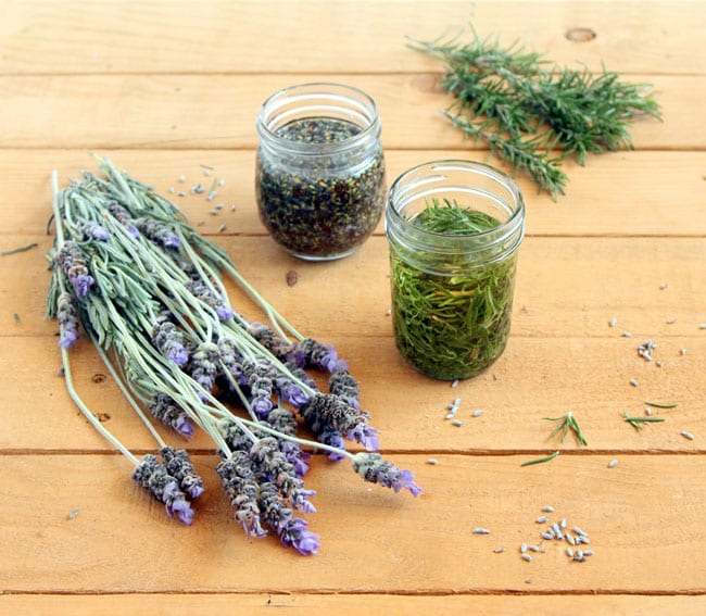 make-herb-infused-oil-apieceofrainbowblog (1)