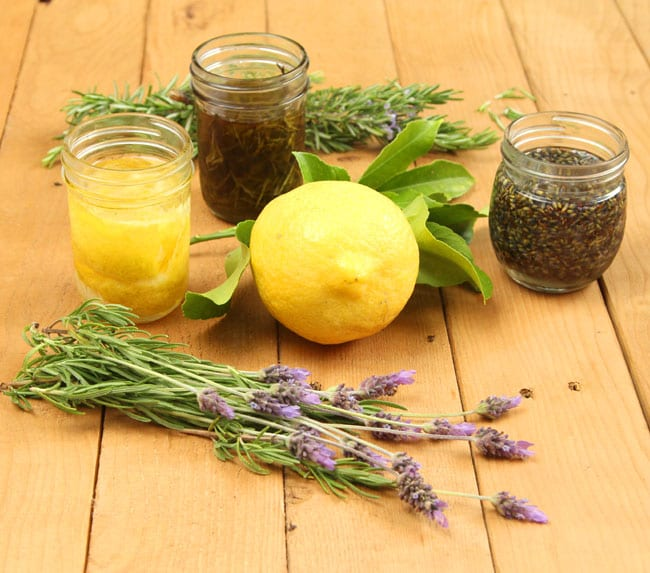 It is so easy and rewarding to make herbal oil from fresh herbs. We will make 3 infused oils: rosemary, lavender, and lemon!