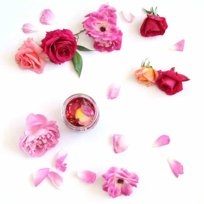 make_rose_oil_apieceofrainbowblog_ (1)