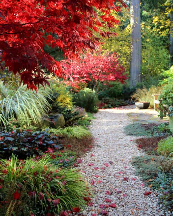 25 Most Beautiful DIY Garden Path Ideas A Piece Of Rainbow