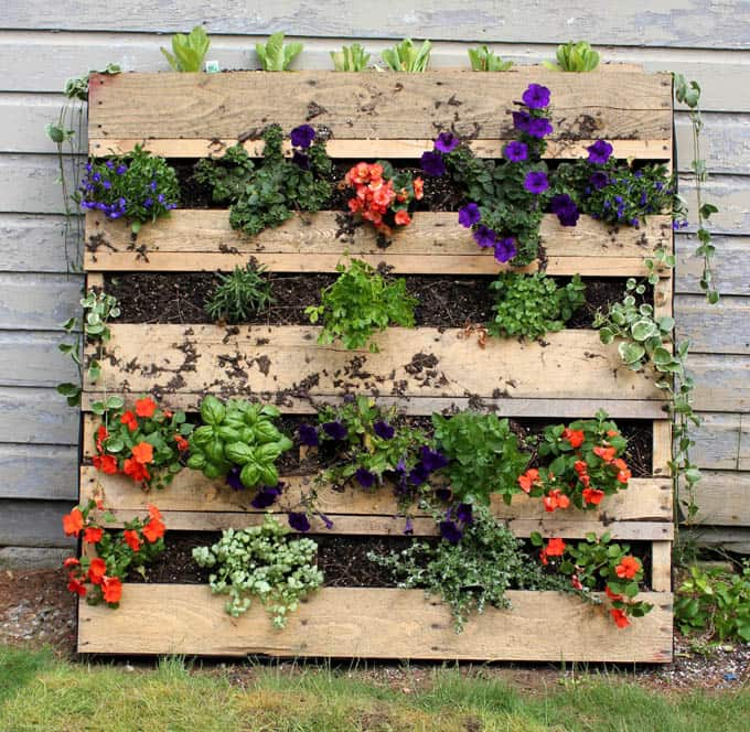 How To Turn Anything Into A Planter : 21 Creative DIY Planter ... | title