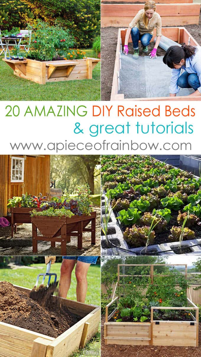 all-about-raised-bed-garden-apieceofrainbow 1