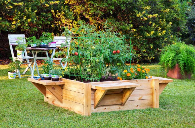 all-about-raised-bed-garden-apieceofrainbow (13)