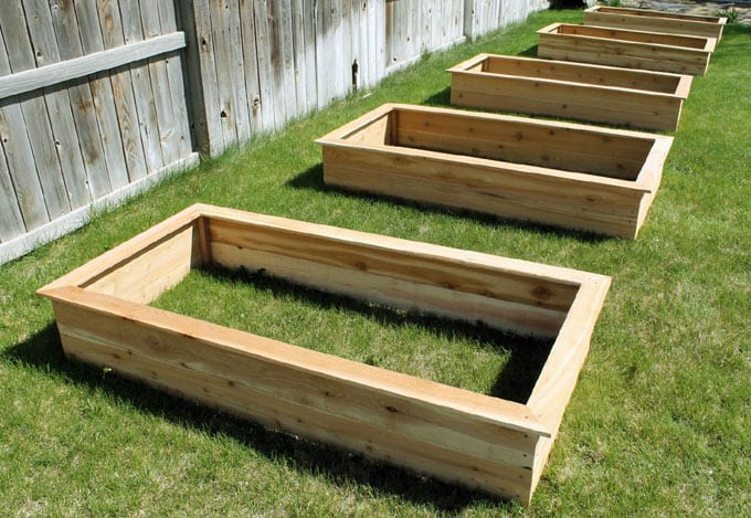 all-about-raised-bed-garden-apieceofrainbow (15)