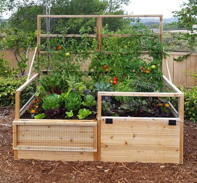 all-about-raised-bed-garden-apieceofrainbow (17)