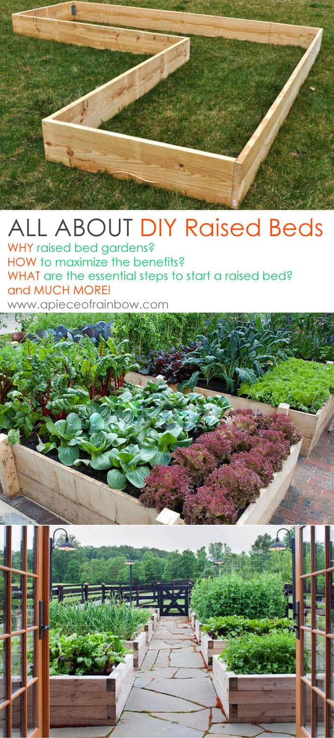 All About Raised Bed Garden Apieceofrainbowblog 1