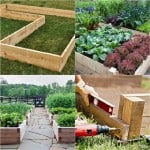 All About DIY Raised Bed – Part 1