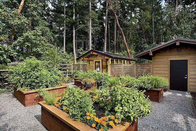 all-about-raised-bed-garden-apieceofrainbowblog (4)