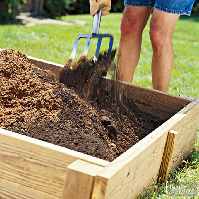 All About DIY Raised Bed