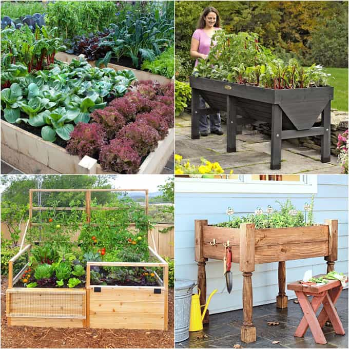 Detailed guide on how to build raised bed gardens! Lots of tips and ideas on best designs, soil, and materials for productive & beautiful DIY raised beds! | A Piece of Rainbow