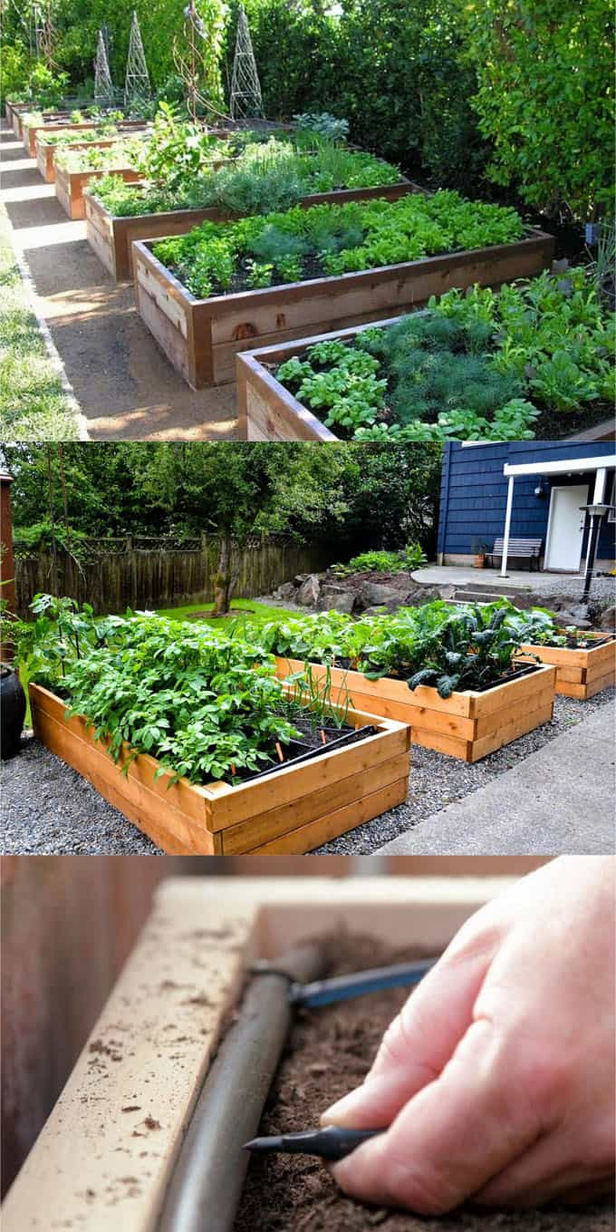 A Raised Bed Built On Hard Surfaces Such As Concrete Or Asphalt Really Rock Sites Should Be 18 Inches More To Encourage Healthy Root Growth