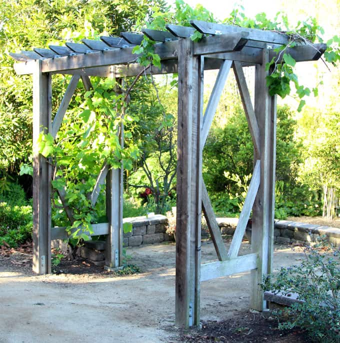 Diy grape arbor simple diy pergola free building plan a piece free building plan for a gorgeous diy friendly arbor pergola it will add so solutioingenieria