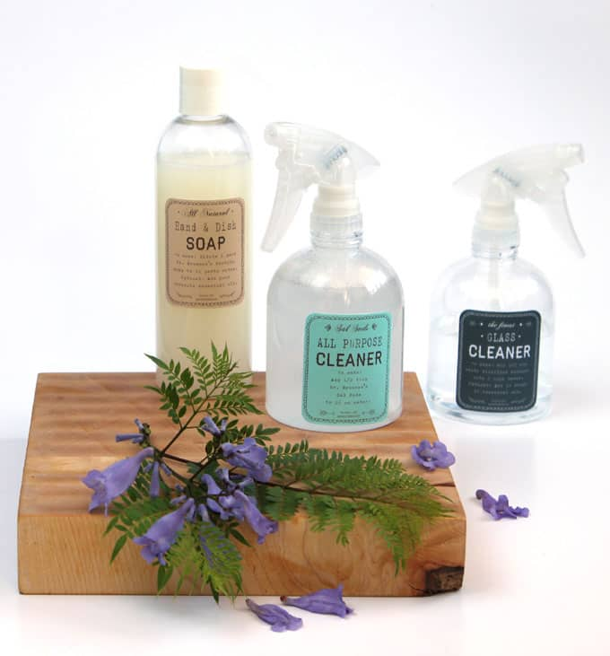 diy super effective green cleaning products a piece of rainbow. Black Bedroom Furniture Sets. Home Design Ideas