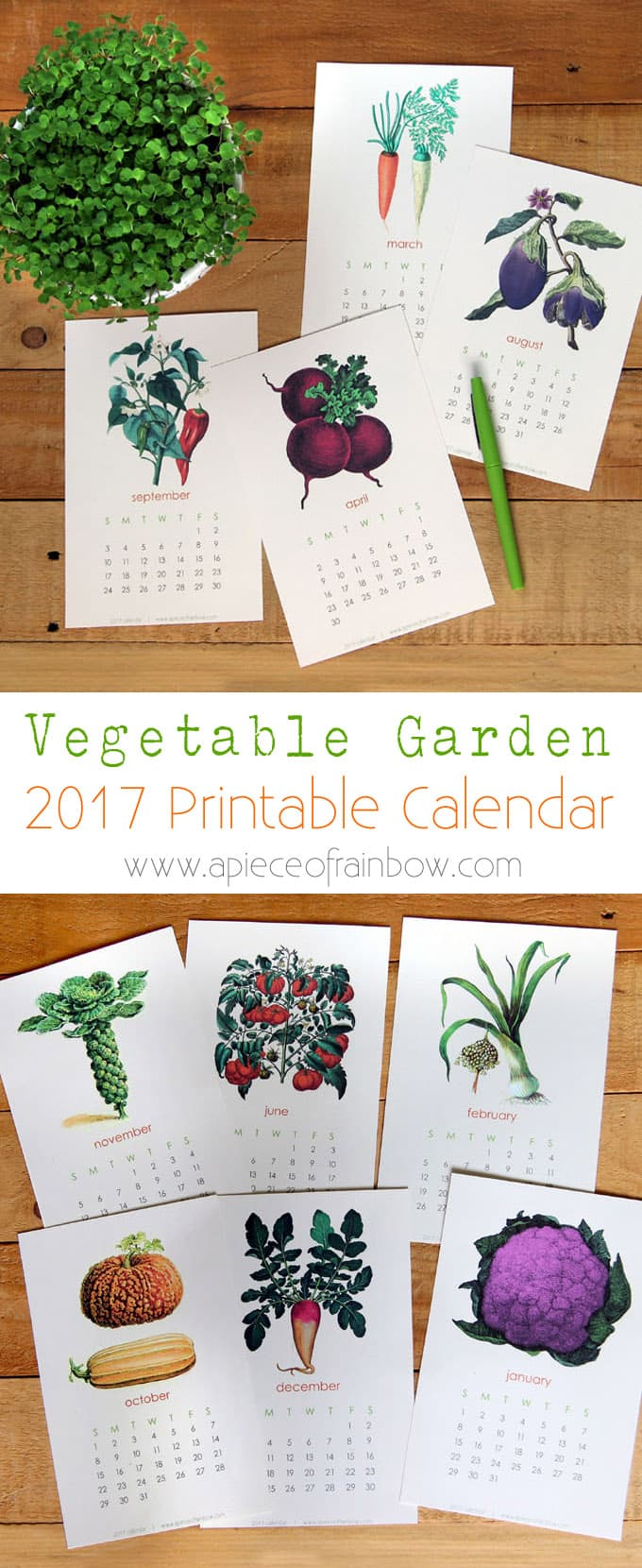 Free 2017 Vegetable Garden Calendar A Piece Of Rainbow