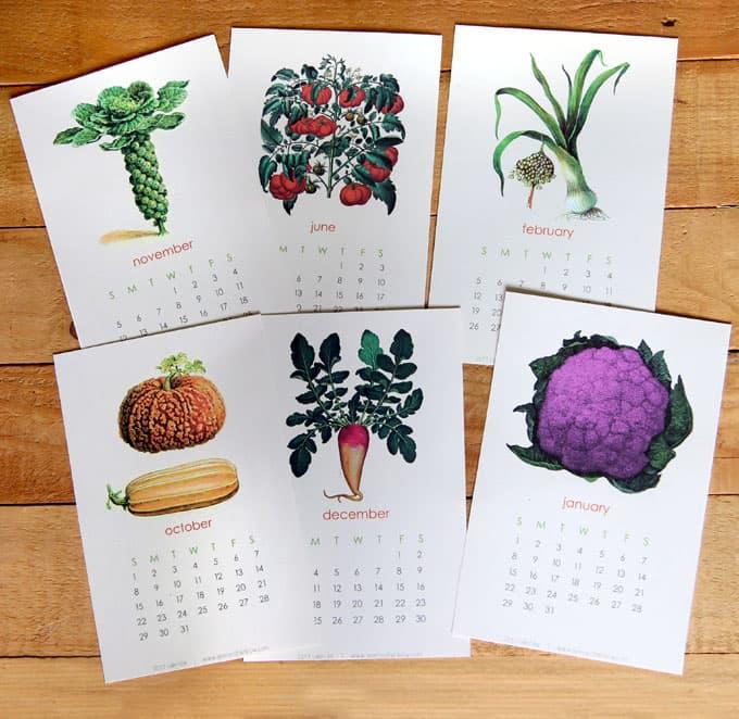 2017-printable-vegetable-garden-calendar-3