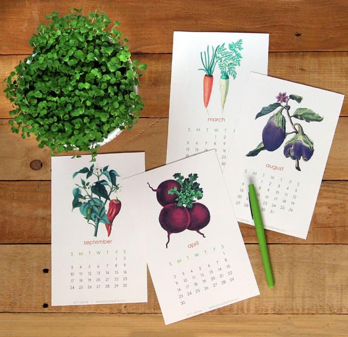 2017-printable-vegetable-garden-calendar-4