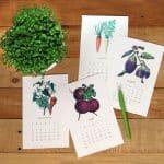 Free 2017 Vegetable Garden Calendar