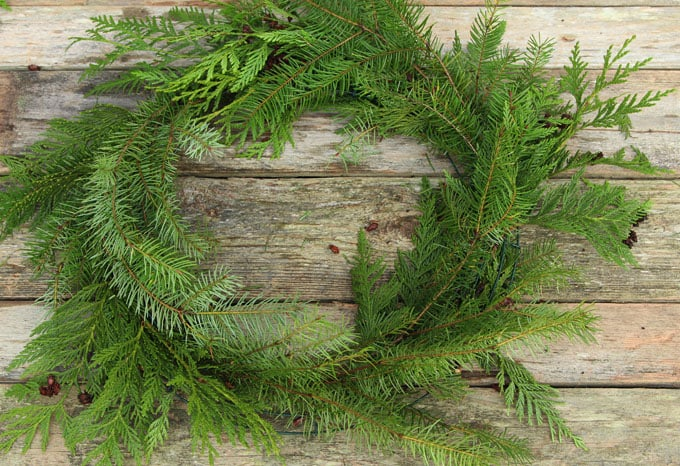diy-fresh-christmas-wreath-apieceofrainbow-8