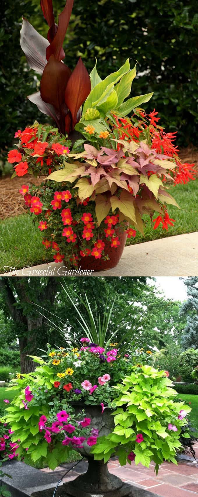 dramatic planter pots