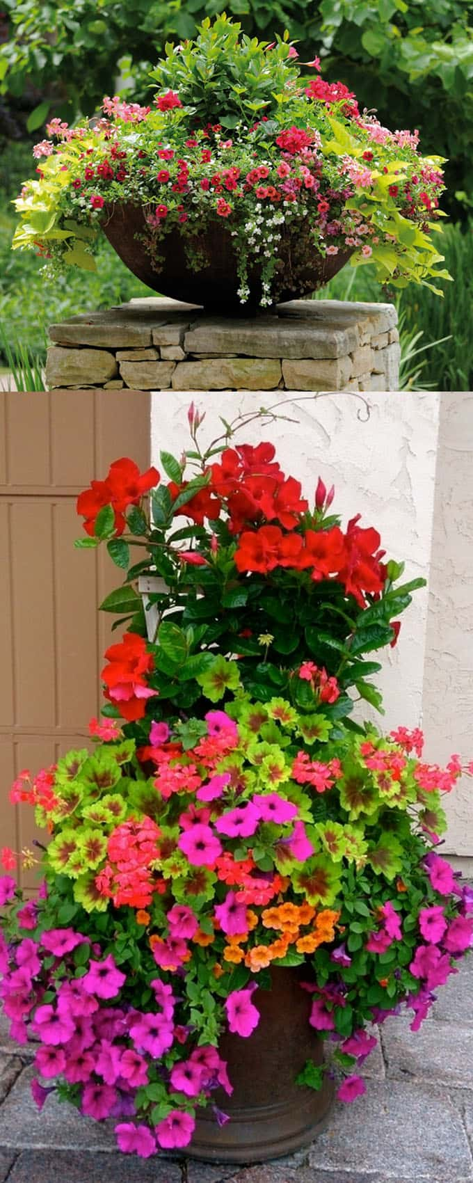Pink and Red flower Planters