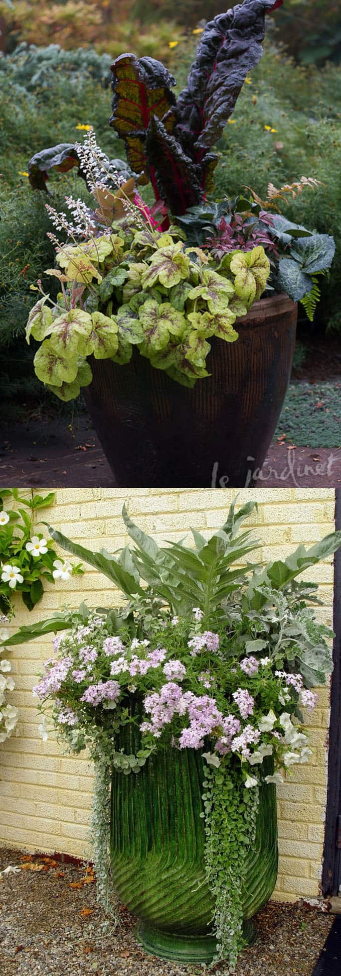herbs and vegetables in garden container pots