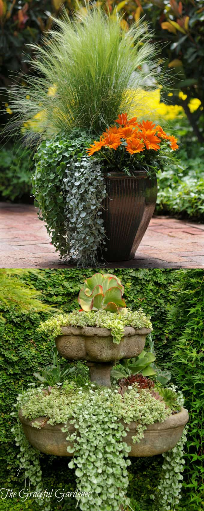 24 stunning container garden planting designs a piece of for Planting plans with grasses