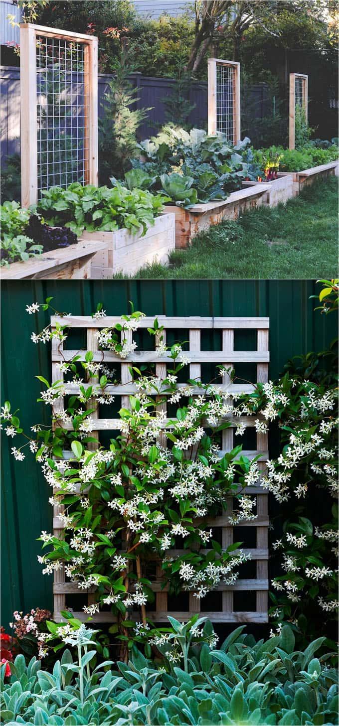 21 Easy Diy Garden Trellis Ideas Vertical Growing