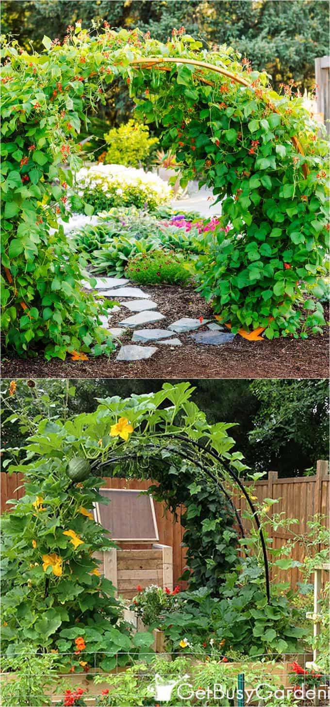 21 Easy Diy Garden Trellis Ideas Amp Vertical Growing