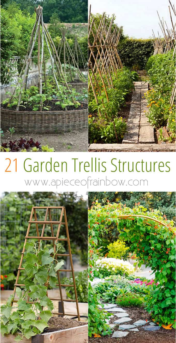 21 Easy DIY Garden Trellis Ideas & Vertical Growing Structures A